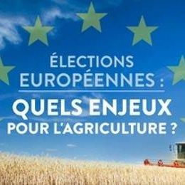élections européennes enjeux agricultures RCF Anjou